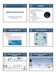 Genética Molecular (Daniel M. Jorge) - BSB 2007