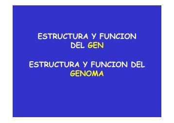 GENES Y GENOMA.pdf