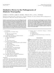 Oxidative Stress in the Pathogenesis of Diabetic Neuropathy