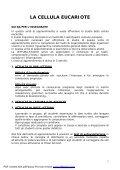 La Cellula Eucariote.pdf - Italiano per lo studio - Page 2