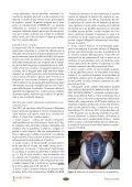 Sanità animale - IZS della Lombardia e dell'Emilia Romagna - Page 7