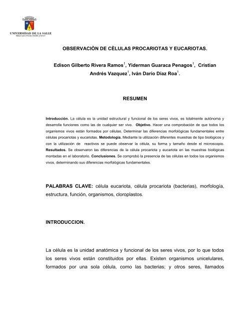 Manejo Del Microscopio Y Del Estereomicroscopio