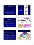 Meccanismi di regolazione dell'espressione genica e della ... - Page 4