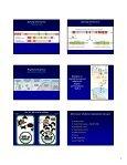 Meccanismi di regolazione dell'espressione genica e della ... - Page 7