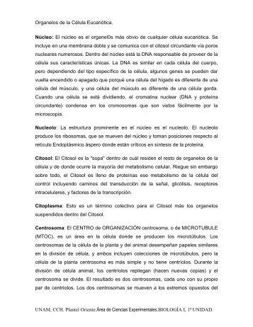 05 Organelles Célula De Eucariotica.pdf - SILADIN Oriente - UNAM