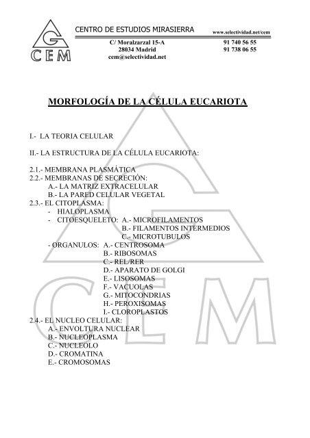 Morfología De La Célula Eucariota I Teoria Celular