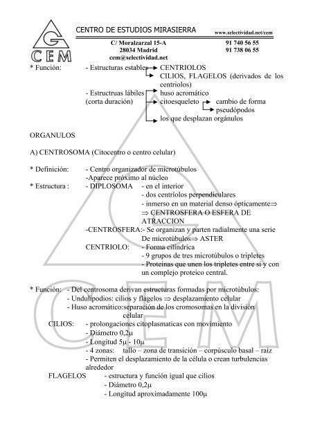 Centro De Estudios Mirasi