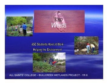 ALL SAINTS' COLLEGE – BULLCREEK WETLANDS PROJECT - YR 8