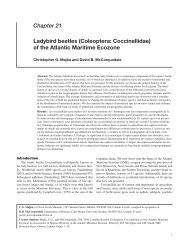 Chapter 21 Ladybird beetles (Coleoptera: Coccinellidae) of the ...