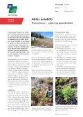 Rapport 2004-0027. Abies amabilis til juletræer - hvad - Naturstyrelsen - Page 3