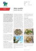 Rapport 2004-0027. Abies amabilis til juletræer - hvad - Naturstyrelsen - Page 5