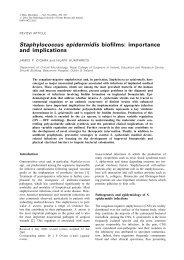Staphylococcus epidermidis biofilms - Journal of Medical Microbiology