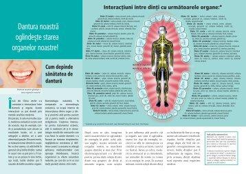 Dantura noastră oglindeşte starea organelor noastre! - BNZ