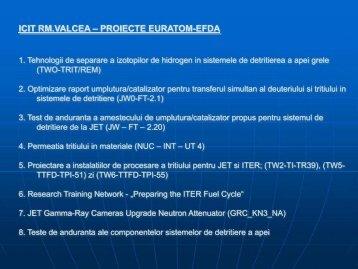 ICIT RM.VALCEA – PROIECTE EURATOM-EFDA - IFA