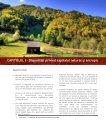 Studiu privind disparitatile existente la nivelul Regiunii de dezvoltare ... - Page 4