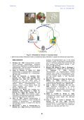 ARTICOL 12 IMRE KALMAN - Veterinary Pharmacon - Page 3