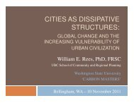 cities as dissipative structures - Washington State University
