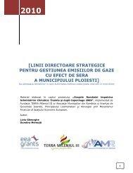 linii directoare strategice pentru gestiunea emisiilor de gaze cu efect ...