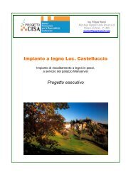 Impianto a legno Loc. Castelluccio Progetto esecutivo - Centro CISA