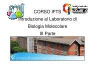 gradenigo1C - Liceo Norberto Rosa
