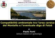 Paolo Forti - Comune di Sernaglia della Battaglia