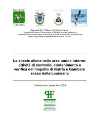 scarica la relazione in .pdf - Aree Umide della Toscana Settentrionale