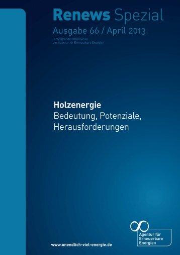 AEE Renews Spezial: Holzenergie - Agentur für Erneuerbare ...