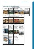 AEE Renews Spezial: Holzenergie - Agentur für Erneuerbare ... - Seite 7