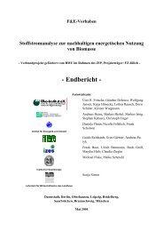 Stoffstromanalyse zur nachhaltigen energetischen ... - Öko-Institut eV