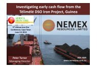 Investigating early cash flow from the Télimélé DSO Iron Project, Guinea