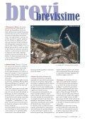 Petrolio sulle nostre coste - Valle del Trigno - Page 3