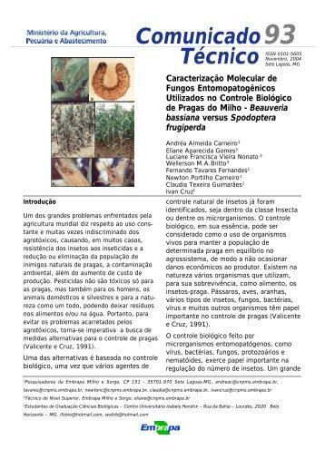 Caracterização molecular de fungos entomopatogênicos ... - Embrapa
