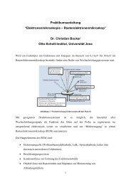 Anleitung Praktikum Elektronenmikroskopie