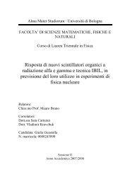 Giulia Guastalla - INFN Bologna