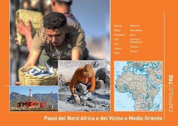 Nord Africa - Cooperazione Italiana allo Sviluppo