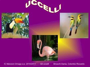 IC Manzoni Ornago a.s. 2010/2011 Gli uccelli Brioschi Dania ...