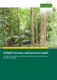 UNIQUE folleto (PDF) - Unique forestry and land use GmbH
