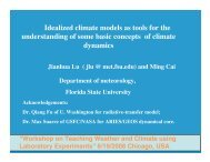 Idealized climate models as tools for the understanding of some ...