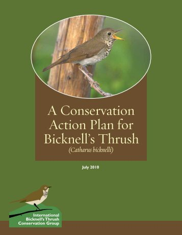 A Conservation Action Plan for Bicknell's Thrush - U.S. Fish and ...