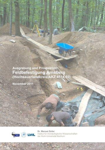 Grabungsbericht vom Institut für Archäologische Wissenschaften der ...