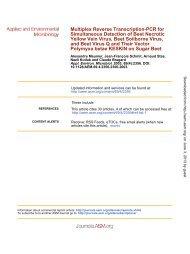 Multiplex Reverse Transcription-PCR for Simultaneous Detection of ...