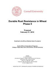 Durable Rust Resistance in Wheat Phase II