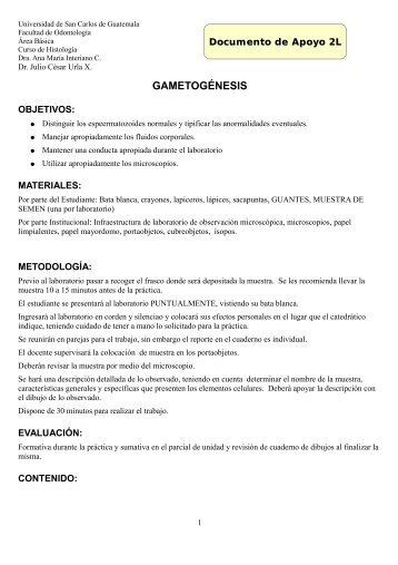 GAMETOGÉNESIS - Apoyo para la Fac. de Odontología – USAC