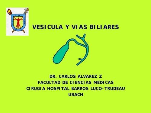 vesicula biliar sintomas portugues