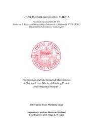 Dipartimento Biotecnologie - Università degli Studi di Verona