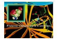 Proteine1 - Altervista