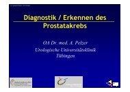 Diagnostik / Erkennen des Prostatakrebs - Universitätsklinik für ...