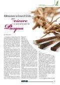 Numero Aprile 2009 del 06.04.2009 - Provincia di San Michele ... - Page 3