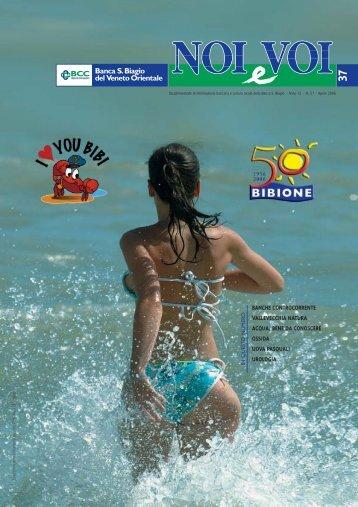 Visualizza il numero 37 di Noi&Voi - Banca San Biagio del Veneto ...