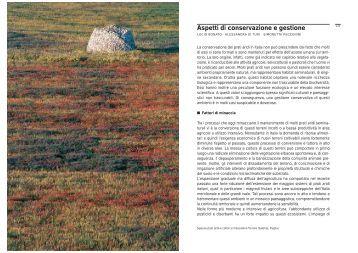 3° parte - Udine Cultura